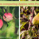 The wrong numbers – are you comparing apples with pears?